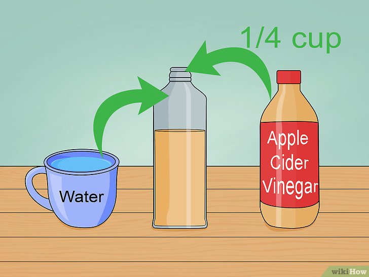 Imagen titulada Clean Your Scalp Step 6